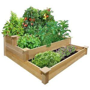 Garden bed kit flowers vegetables herb tomato cages planter seed soil raised box for Soil for vegetable garden raised bed