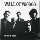 Wall of Voodoo 33 RPM Speed Vinyl Records