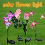 Outdoor Solar Party Lights