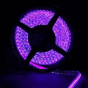 Purple LED Strip 5M