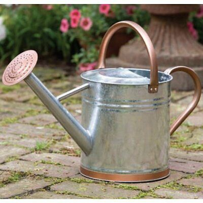 Gardman 8326 1 Gallon Watering Can with ...