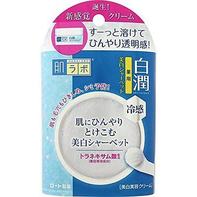 Rohto Hadalabo Hakujun Cold Feeling Whitening Sherbet 30G Shiping From Japan