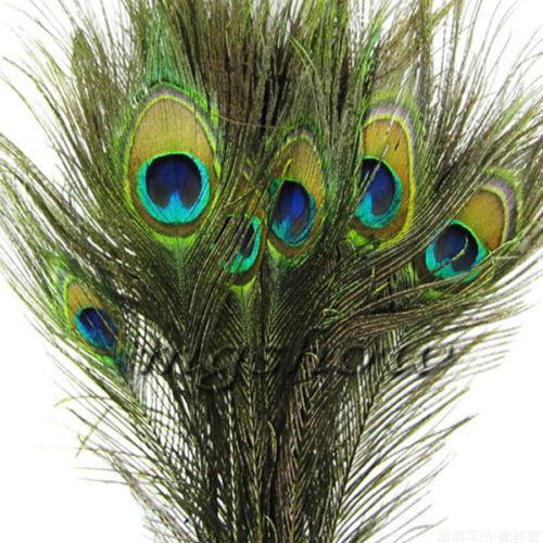50 peacock feathers crafts ebay for Where to buy craft feathers
