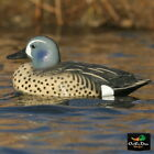 Blue-Winged Teal Hunting Decoys