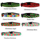 Mirage Cat Collars and Tags