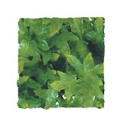 Plastic Ivy