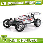 HSP Buggy RC Model Cars & Motorcycles