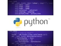 Online Programming with Python for Highly Skilled Children