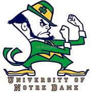 Notre Dame Fabric