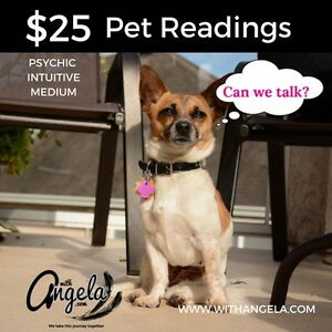 Companion Animal Readings with Angela- Psychic Medium