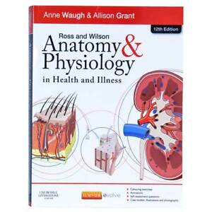 Nursing Anatomy Pathology Dosage Math Textbook Lesson One on One