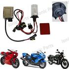 Motorcycle HID Conversion Kit