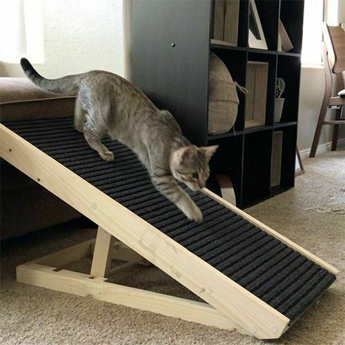 Scratchy Ramp for Cats