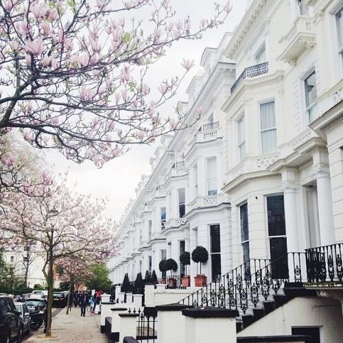 WANTED!2 BED FLAT SW15🏡LONDON