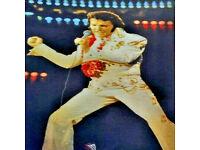 Boys Elvis Presley Costume Kids Rock n Roll Star King Fancy Dress Child Age 4-12