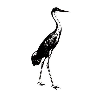 SANDHILL CRANE unmounted bird rubber stamp #9