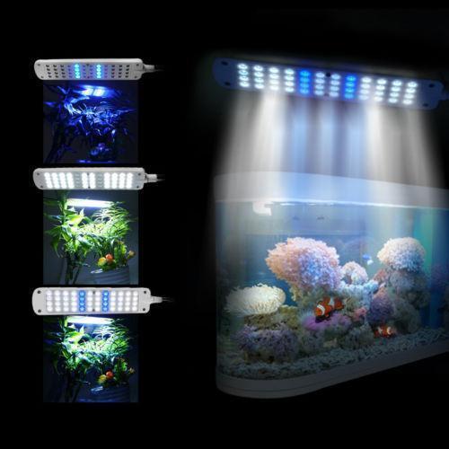 Blue Led Aquarium Ebay