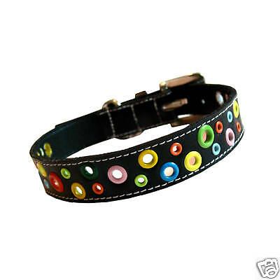Cool Leather Dog Collar Loki Puppy Leather Dog Collar  Loki Puppy Leather