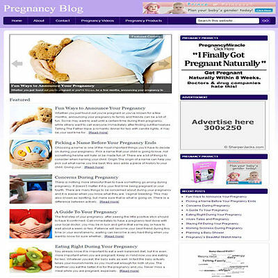 Established Pregnancy Blog Affiliate Website Turnkey Business  Free Hosting