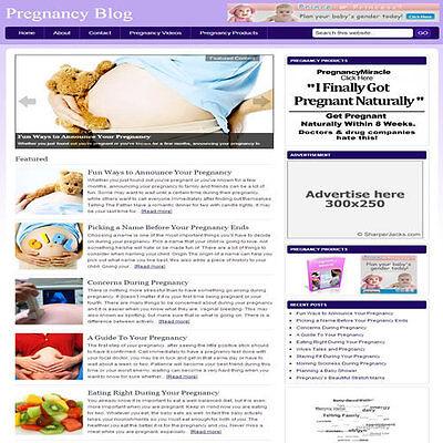 Established Pregnancy Blog Affiliate Website Turnkey Business  Free Hosting