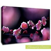 Plum Flower Canvas