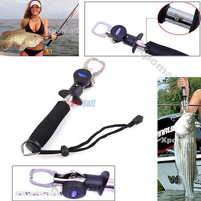 весы захват для рыбалки