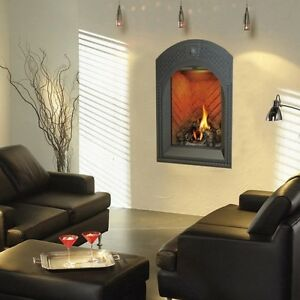 Napoleon Top vent gas Fireplace