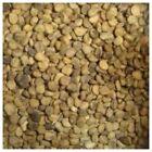 American Seed Ginseng Herb Seeds