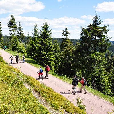 4T/HP Thüringer Wald Wellness Urlaub Hotel Gutschein Halbpension Kurz Reise Deal