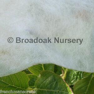 10m x 1.6m Heavyweight Horticultural Fleece, 30gsm Garden Frost Protection
