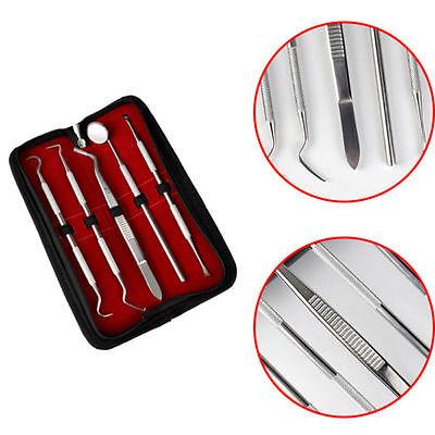 Dentist Tool Kit Stainless Steel Tarter Remover Dental Pick Teeth Hygiene Set