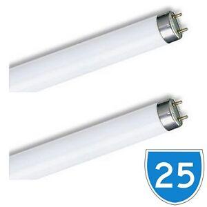box 25 philips 2ft 18w 835 t8 fluorescent white 3500k 835 tube light lamp 600. Black Bedroom Furniture Sets. Home Design Ideas