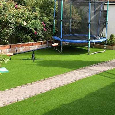 20kg Leisure Lawn Grass Seed - Hardwearing Mix Ideal For Everyday Lawns