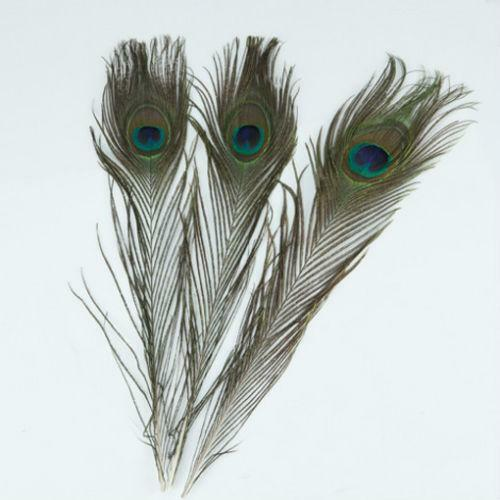 Wholesale peacock feathers ebay for Where can i buy feathers for crafts