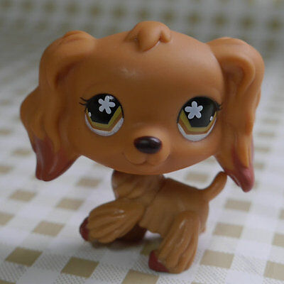 Cocker Dog Brown eyes Littlest pet shop LPS #2660 mini Action Figures #716