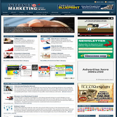 Established Internet Marketing Website Turnkey Business Free Hosting