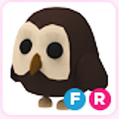 Fly Ride FR Owl  ( Adopt me pet )