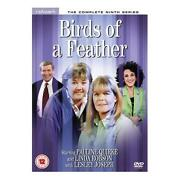 Birds of A Feather DVD