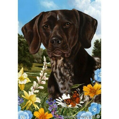 Summer House Flag - German Shorthaired Pointer 18049