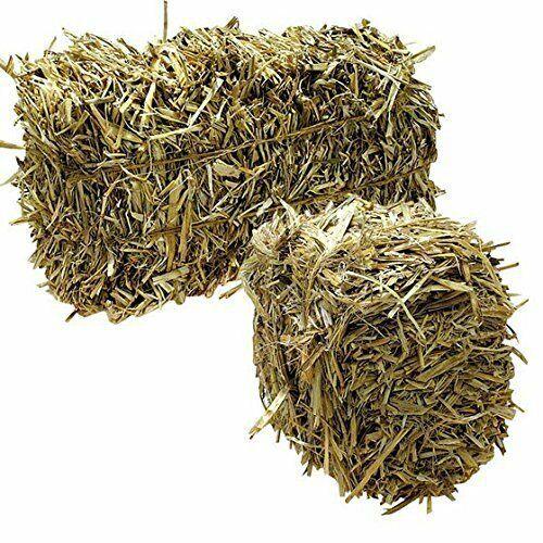 JUMBO Barley Straw Bales (4 lbs to 5 lbs) -Pond Algae Control Water Treatment