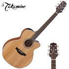 Takamine Electro-Acoustic Guitars