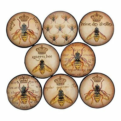 (Set of 8 Queen Bee Cabinet Knobs Drawer Knobs)