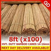 8ft Bamboo Canes
