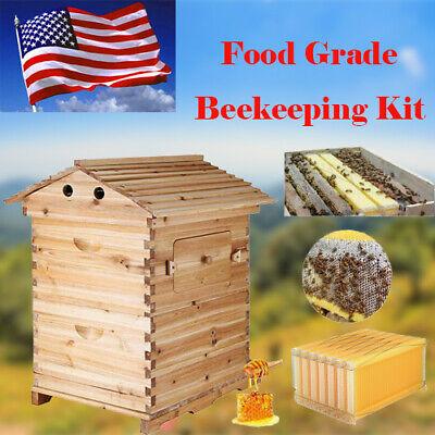 7pcs Free Flowing Honey Bee Hive Framescedarwood Beehive House Beekeeping Box