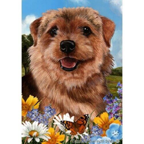 Summer House Flag - Norfolk Terrier 18225