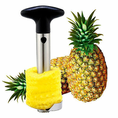 Easy Kitchen Tool Fruit Pineapple Corer Slicer Cutter Peeler Stainless Steel