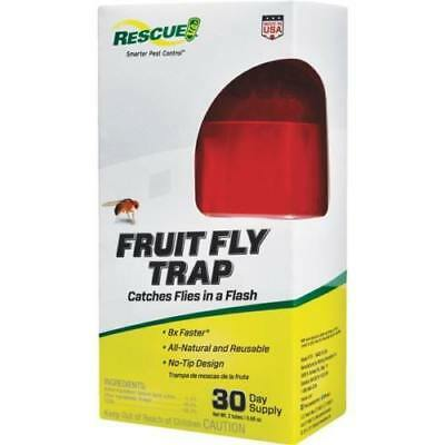 RESCUE Fruit Fly Trap Non Toxic Catch Indoor Insects All Natural Attractant ()
