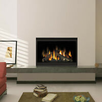 NAPOLEON BGD42CF Clean Face Direct Vent Fireplace 42""