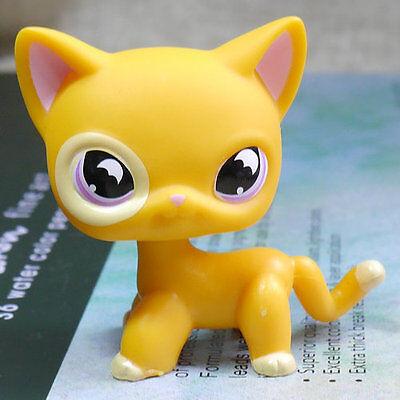 Orange Moon Eyes Cat  855 Htf Figure Lps Mini Action Figure Littlest Pet Shop