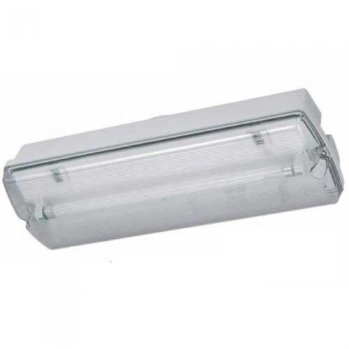 Maintained Emergency Light Ebay